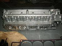 Головка блока ГАЗЕЛЬ двигатель 406 с клап.с прокл.и крепеж., фирменная упаковка. (Производство ЗМЗ)б AJHZX