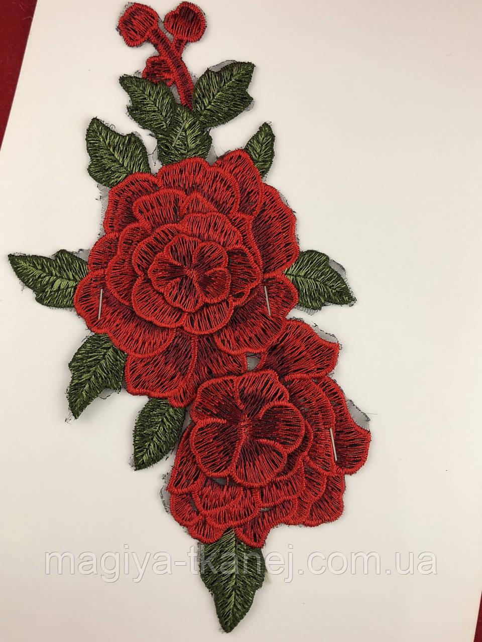 Роза 6055