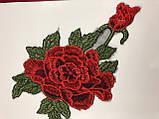 Роза 6112, фото 2