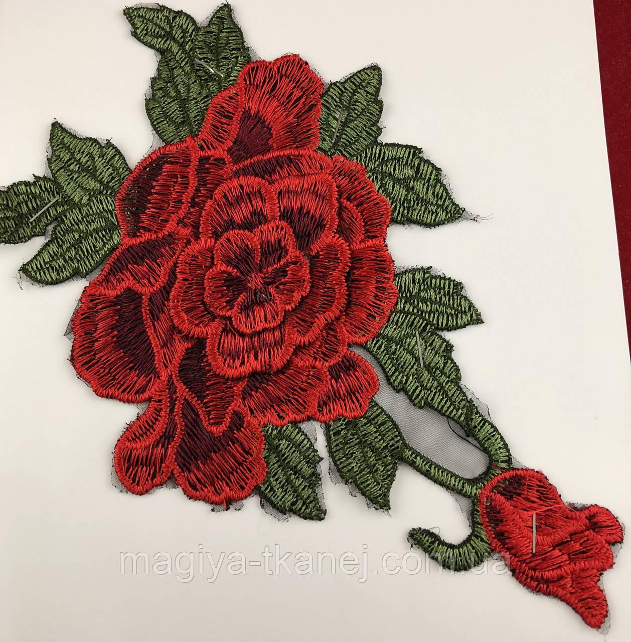 Роза 6112