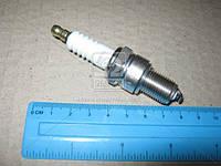 Свеча зажигания COPPER DAEWOO LANOS, LADA, CHEVROLET AVEO (производство CHAMPION) (арт. OE006/T10)
