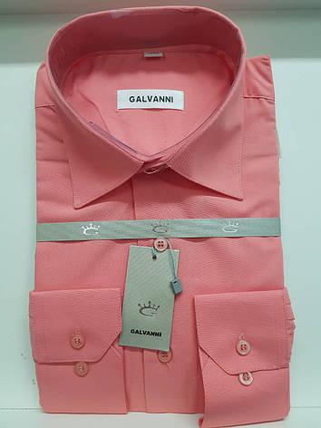 Сорочка Galvanni, фото 2
