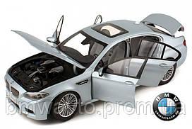 Модель автомобиля BMW M5 (F10)