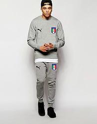 Мужской футбольный костюм Puma серого цвета