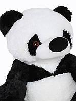 Большая плюшевая игрушка Алина Панда 200 см