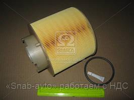 Фильтр воздушный (Производство MANN) C17137X, ACHZX