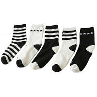 5 парных теплых женщин дезодорант Модные носки Цветной