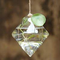 Подвесная стеклянная ваза для террариума ромб
