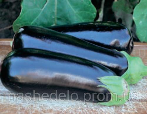 Семена баклажана Анатолия F1 1000 семян Rijk Zwaan