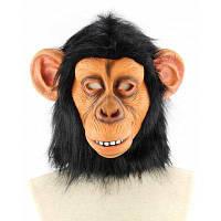 Латексная маска ушастой обезьяны Цветной