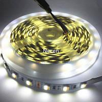 Светодиодные полосы света 300-СИД / рулон 5025 SMD DC 12V 5M для светодиодный экран белый 1001#