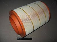 Фильтр воздушный 93231E/455/2 (производство WIX-Filtron) (арт. 93231E), AFHZX