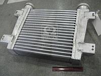 Охладитель наддувочного воздуха ГАЗ, ПАЗ Д245.7.9 (Производство Беларусь) 250-1172010, AHHZX