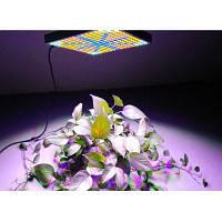Youoklight 1шт 45ВТ напряжение тока ac85 ~ 265В 225-2835 LED Площадь завода светать Конвертер путешествий ЕС