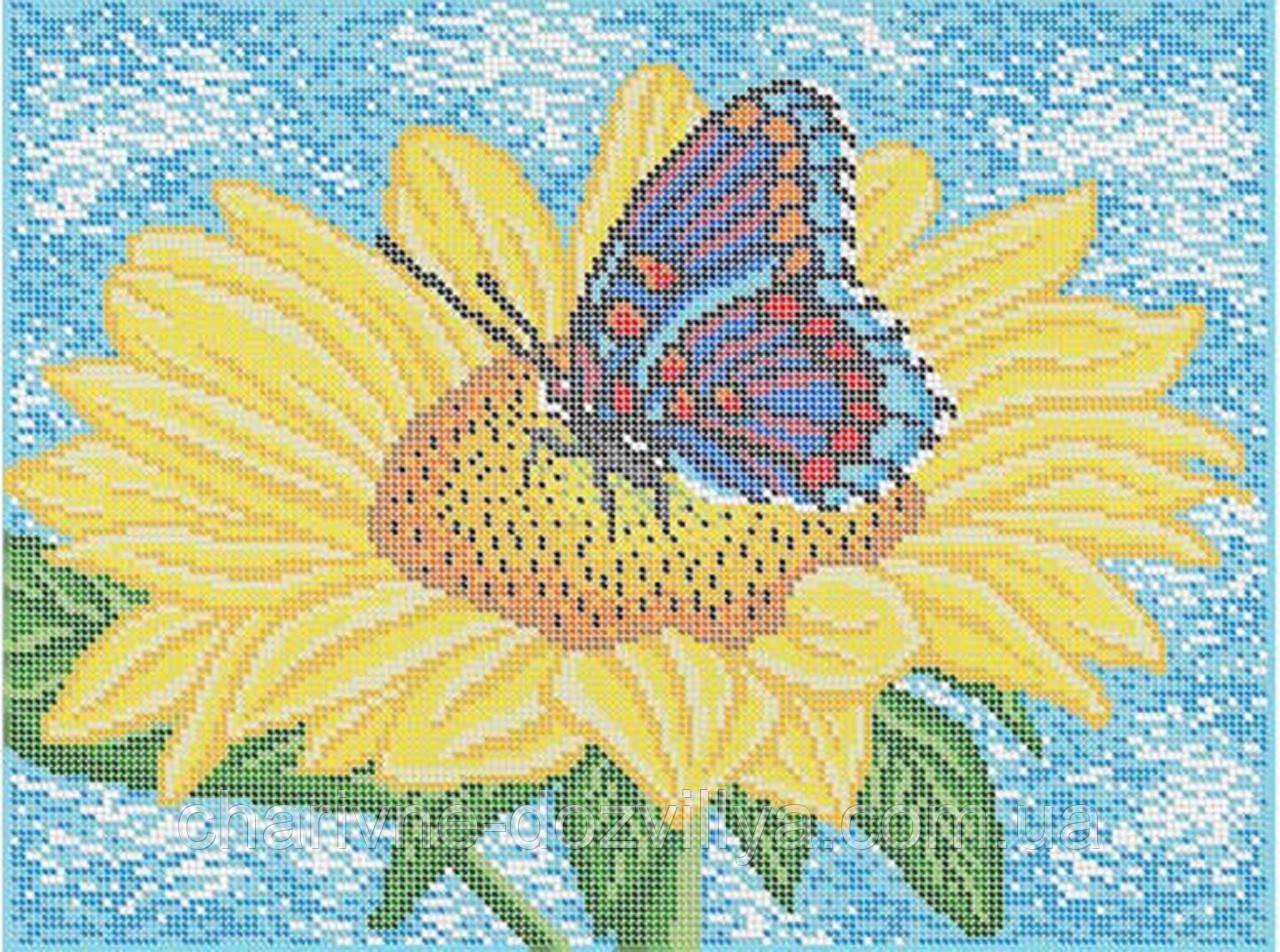 """Схема для вышивки бисером (бісером) на габардине """"Бабочка"""""""