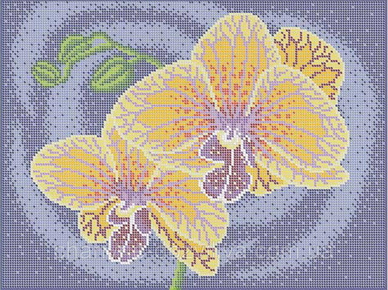 """Схема для вышивки бисером (бісером) на габардине """"Орхидеи"""""""