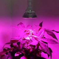 Е27 30Вт светодиодная лампа для роста растения датчик движения для освещения Пурпурно-фиолетовый