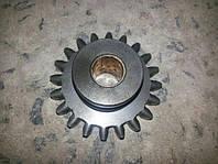 Шестерня компресора МТЗ d-12