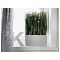 ФЕЙКА Искусственное растение в горшке, трава, 40207683 ИКЕА, IKEA, FEJKA
