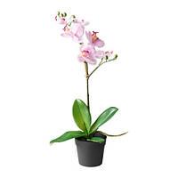 ФЕЙКА Искусственное растение в горшке, орхидея, сиреневый, 10292300, ИКЕА, IKEA, FEJKA