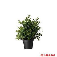 ФЕЙКА Искусственное растение в горшке, трава, 10 см, 001403263, ИКЕА, IKEA, FEJKA