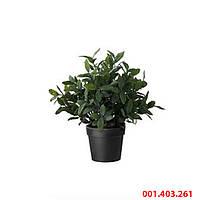 ФЕЙКА Искусственное растение в горшке, трава, 10 см, 001403261, ИКЕА, IKEA, FEJKA