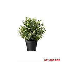 ФЕЙКА Искусственное растение в горшке, трава, 10 см, 001403262, ИКЕА, IKEA, FEJKA