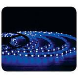 """Лента светодиодная в силиконе (влагозащищенная) SMD LED 35x28 60Led/m (4,8W/m) """"REN"""", фото 6"""