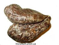 Бобровая струя, Кастореум 1 грамм (мускус)