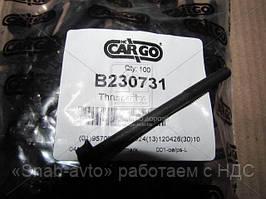 Болт (производство CARGO)