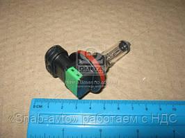 Лампа накаливания H11 12V 55W PGJ19-2 Vision +30 (Производство Philips) 12362PRC1, ABHZX