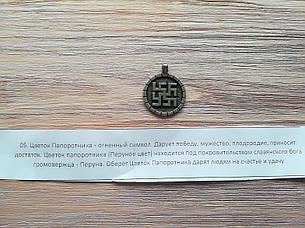Цветок Папоротника, фото 2