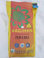 Семена подсолнечника Прими Экстра (евролайтнинг), фото 1