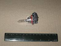 Лампа накаливания H912V 65W PGJ19-5 (Производство Philips) 12361C1, ACHZX