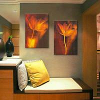 МК 2шт специальная Конструкция Бескаркасных Живопись абстрактные цветы 9 x 13 дюйма (24cм x 34cм)