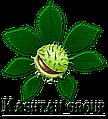 Інтернет-магазин меблів Каштан груп