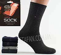 Мужские носки махровые оптом BFL A 88 Z. В упаковке 12 пар, фото 1