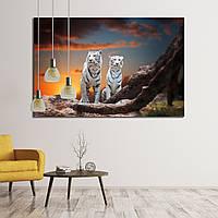 Картина - Тигры альбиносы