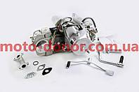 Двигатель   для мопеда Delta 125cc   (АКПП 1Р53FMI 4П)   TZN