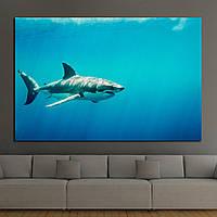 Картина - Большая акула
