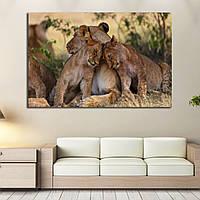 Картина - Семья львов