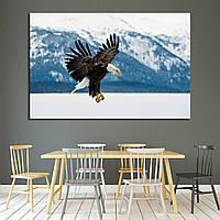 Картина - Горный орел
