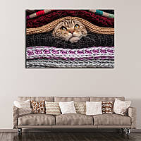 Картина - Веселый котик