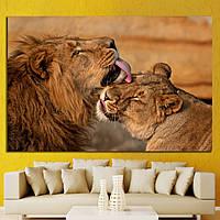 Картина - Львы
