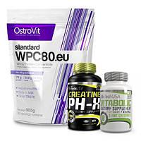 Ostrovit WPC 80 Standart |  BioTech Creatine pHX 90 капсул | Vitabolic 30 tab