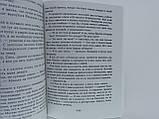 Акунин Б. Коронация, или последний из романов., фото 6