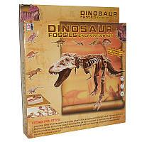 """Раскопки 178Е """"Динозавр"""""""