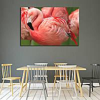 Картина - Розовый фламинго