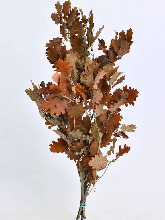 Дубовые листья коричневые 50-60см
