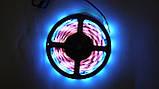Cветодиодная лента LED 5050,7 цветов,5 метров(разноцветная), фото 6